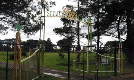 Pines' Scout Camp