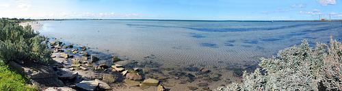 Altona Coastal Park G