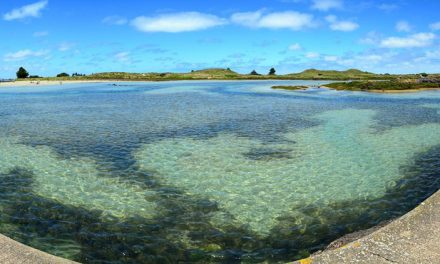 Quaint Fishing Village of Port Fairy