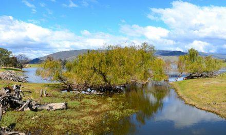 Trip to Lake Hume