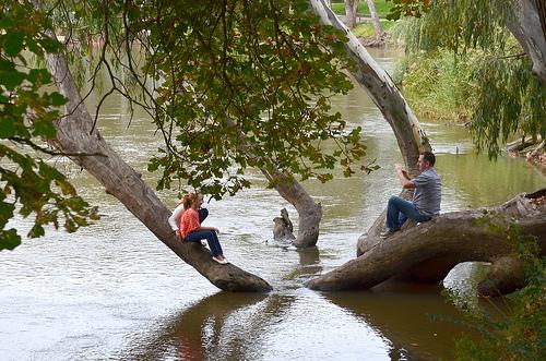 Murray River  26