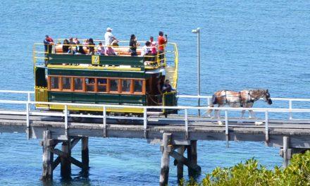 Repurposing Retired Trams