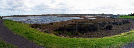 Truganina Swamp