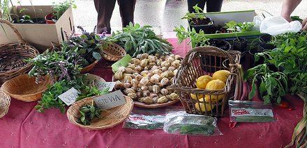 Newport Fruits & Vegetables Swap