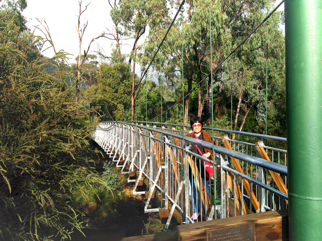 Suspension Bridge A