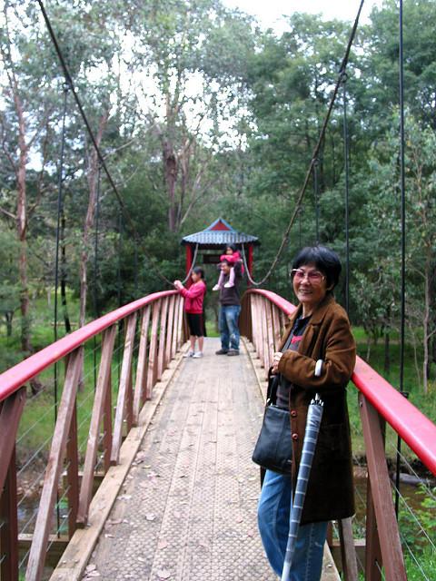 The Diggings - Chinese Bridge 02