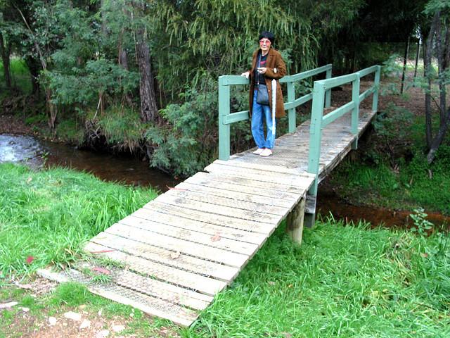 The Diggings - Bridge 01