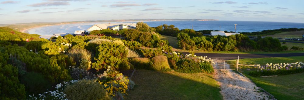 Surreal Landscapes of Cape Bridgewater