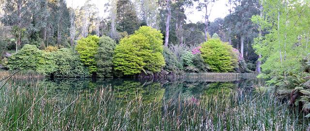 Lake A